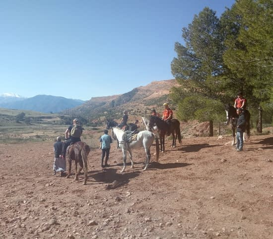 horse riding in atlas mountains (7)
