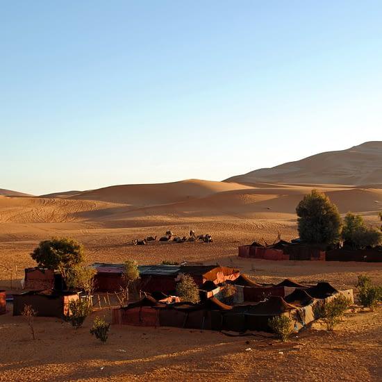 4 days sahara tour (9)
