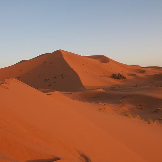 3 days sahara tour (8)