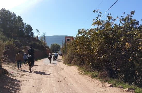 horse riding in atlas mountains (10)