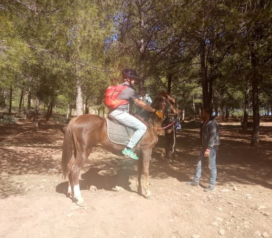 horse riding in atlas mountains (8)