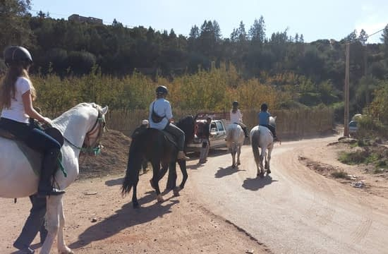 horse riding in atlas mountains (9)